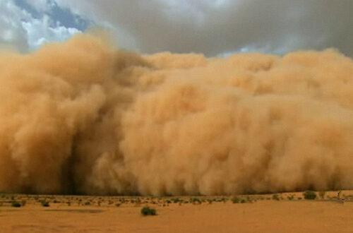 Article : Ode à la poussière
