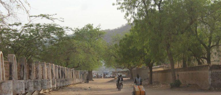 Article : Une journée à Mongo, à la découverte de la gastronomie tchadienne