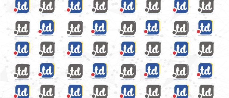 Article : Au Tchad, un forum pour relancer le nom de domaine « .td »