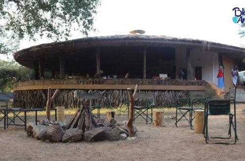Article : Le parc national de Zakouma, une expérience humaine avant tout